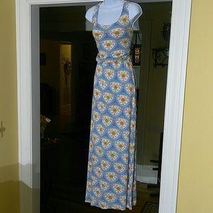 Anthropologie (fantastic fawn) ladies maxi dress